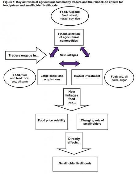 Oxfam explica cómo controla el oligopolio de los cereales