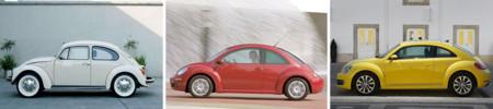 Beetle Evolucion