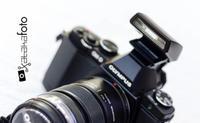 La Olympus OM-D E-M5 y su sucesora podrían compartir el mismo sensor de imagen