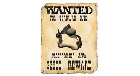 Los programadores Java serán de los profesionales más demandados en el 2012