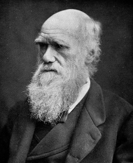 Portrait Of Charles Darwin Wellcome