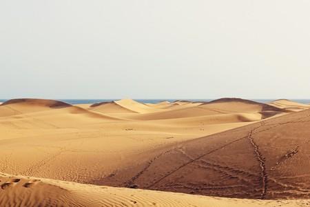 Los autónomos de Canarias y Castilla y León también podrán disfrutar de la extensión en la tarifa plana