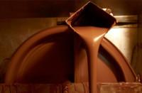 Cacao y chocolate, ¡no es lo mismo!