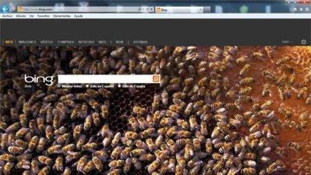 Integración social entre Bing y Facebook ¿Veremos con la búsqueda de imágenes incidencias de privacidad?