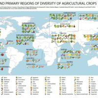 De Asia Menor a tu mesa: así se producen y distribuyen los cultivos de todo el mundo