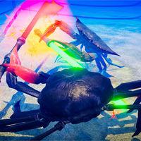 Fight Crab, el juego de lucha con unos violentos cangrejos armados hasta los dientes, entra en fase de acceso anticipado