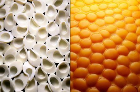 Sorprendentes fotografías de comida de Mitch Feinberg