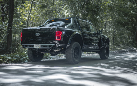 Mil Spec Automotive Intrepid F 150 3