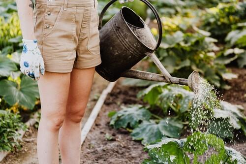 Ofertas en herramientas y accesorios de jardín Lidl, con cortacéspedes, hidrolimpiadoras o palas rebajadas hasta un 30%
