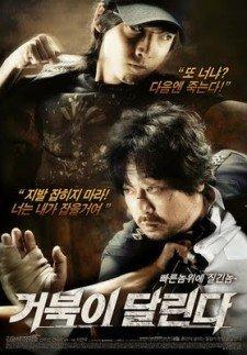 running-turtle-corea-poster