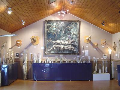 El Museo del Pene en Húsavík, Islandia
