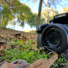 Foto 11 de 14 de la galería fotos-hechas-con-pixel-xl en Xataka