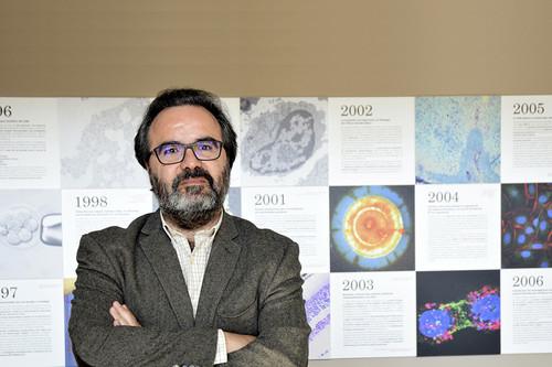«CRISPR nos da una baza agresiva y directa para combatir el coronavirus», Lluís Montoliu, presidente del Comité de Ética del CSIC