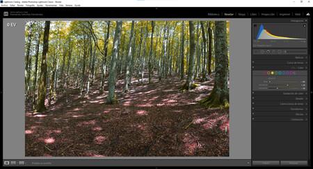 Colores otoñales en Adobe