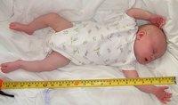 Los bebés in vitro, más altos que los de embarazo natural