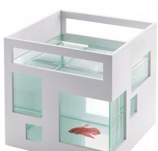 Pecera decoesfera for Umbra fish hotel