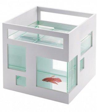 Fish Condo, una pecera minimalista