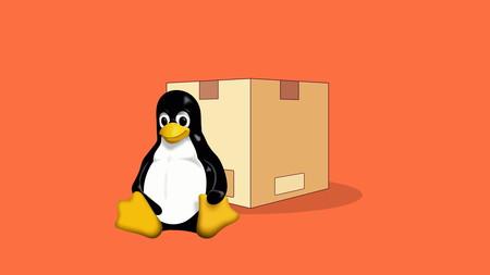 AppImage, Snap, Flatpak... en qué se diferencian los principales formatos de distribución de software de Linux