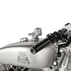 Foto 16 de 24 de la galería hd-iron-riot en Motorpasion Moto