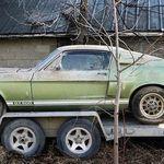 ¡Tesoro de granero! Encuentran un Ford Mustang Shelby GT500 1967 que estuvo abandonado 40 años