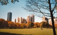 Cosas que ver en Nueva York en un día cualquiera (y II)