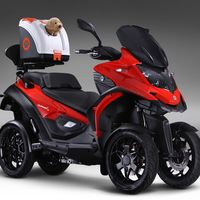 Sí, puedes llevar a tu perro en moto, pero no de cualquier forma según la ley