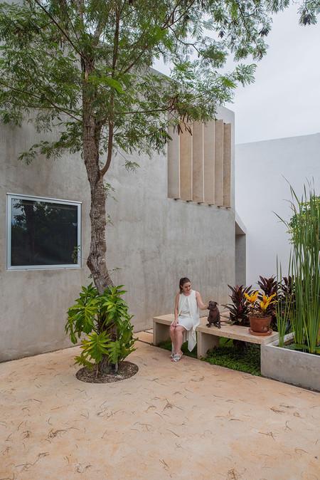Casa Lago Taco Taller Arquitectura Contextual Leo Espinoza 02