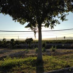 Foto 1 de 31 de la galería realme-7-pro-galeria-de-fotos en Xataka