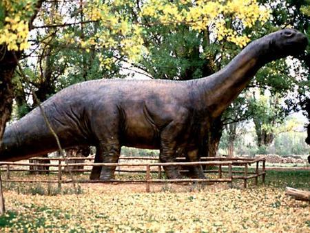 El Aragosaurus más joven de lo que se pensaba