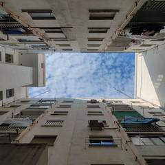 Foto 94 de 95 de la galería fotos-hechas-con-el-oneplus-8 en Xataka