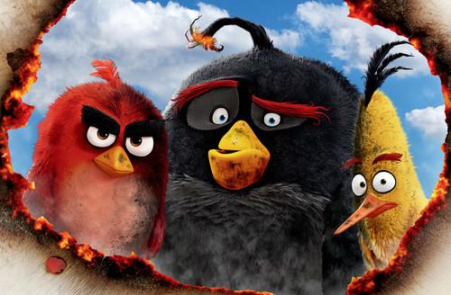Animación | 'Angry Birds. La película', de Clay Kaytis y Fergal Reilly