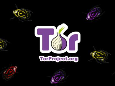 "Tor prepara un programa de incentivos que premiará a aquellos que encuentren ""bugs"""