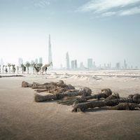 'Transiciones', una reflexión sobre los efectos de la globalización en el festival GetxoPhoto 2017