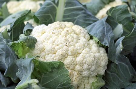 Cuales Son Verduras Temporada Puedes Disfrutar Septiembre Recetas Coliflor