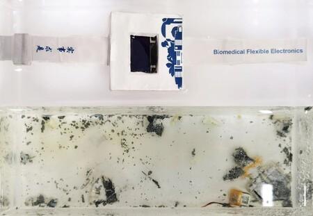 Este smartwatch esta hecho para ser reciclado casi al completo: al sumergirlo en agua se disuelve en 40 horas