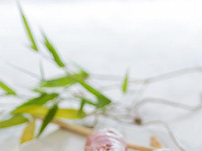 Nems de jamón serrano y mascarpone con melón e higos. Receta de aperitivo