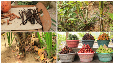 especias en zanzibar