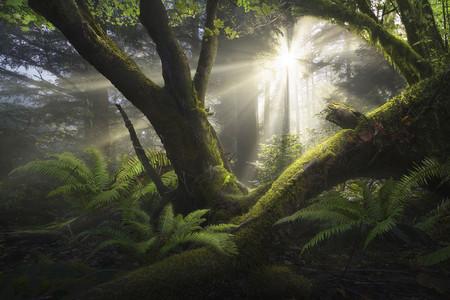Estas son las mejores fotos de paisaje de 2018 según el concurso The International Landscape Photographer of the Year