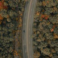 ¿Buscando un nuevo SUV para tus escapadas otoñales? Tenemos la solución