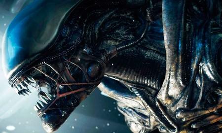 Fox Esta Trabajando En Un Nuevo Proyecto Basado En La Saga Alien