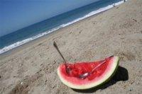 Algunos alimentos recomendados para cuando vamos a la playa