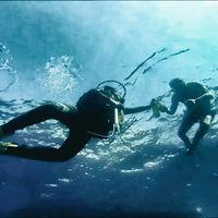 Vinos submarinos y botellas bajo el mar: ¿moda o marketing?