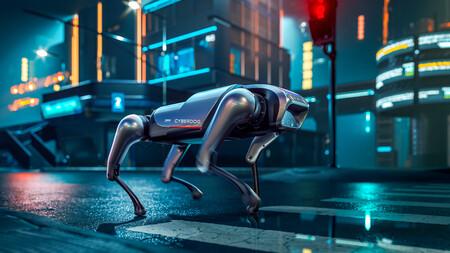 Cyberdog 06