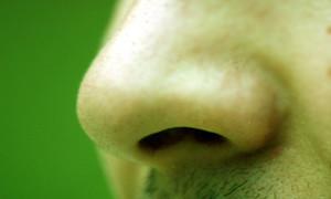 Vellos indeseados: nariz y orejas.