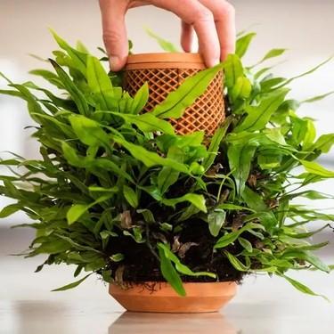 Este tiesto riega tus plantas por ti sin necesidad de electricidad (y tampoco necesita tierra)