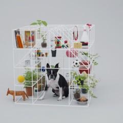 arquitectura-para-perros