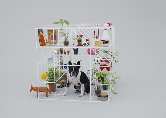 Foto de Arquitectura para perros (1/4)