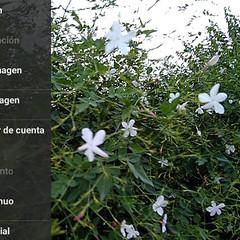 Foto 3 de 5 de la galería cat-s60-app-de-camara-1 en Xataka Móvil