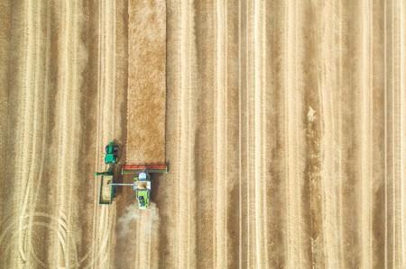 agricultura-arar-pesticidas