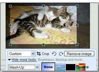 Edición básica de imágenes y versión móvil, nuevas funciones de Google page creator